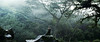 (laura zalenga) Tags: fog jungle trees landscape hawaii kauai paradise girl woman model selfportrait green stone rock ©laurazalenga