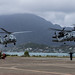 Sea Hawks and Black Hawks touch down at MCBH Kaneohe Bay