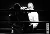 23565 - Referee (Diego Rosato) Tags: boxe boxelatina boxing night palaboxe ring pugno punch bianconero blackwhite nikon d700 70200mm sigma rawtherapee referee arbitro