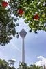 KL Tower (Thomas Rotte) Tags: kl tower kuala lumpur malaysia radio tv communications antenna sky blue trees chinese new year cny lanterns menara