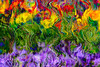And what about tomorrow (LotusMoon Photography) Tags: abstract abstraction colorful vividcolor bright brilliant texture pattern painterly annasheradon lotusmoonphotography
