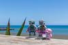 My circuits tell me that I love you (Ballou34) Tags: 2017 7dmark2 7dmarkii 7d2 7dii afol ballou34 canon canon7dmarkii canon7dii eos eos7dmarkii eos7d2 eos7dii flickr lego legographer legography minifigures photography stuckinplastic toy toyphotography toys stuck in plastic robot love teddy bear sea sand blue beach saintpaul réunion re
