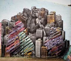 Great when an artist likes a pic. Regrann from @ceepil - It's a concrete jungle out here ! photo by @ferdinandfeys 📷 - #regrann (Ferdinand 'Ferre' Feys) Tags: instagram gent ghent gand belgium belgique belgië streetart artdelarue graffitiart graffiti graff urbanart urbanarte arteurbano ferdinandfeys ceepil