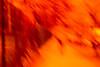 20180413-062 (sulamith.sallmann) Tags: analogeffekt analogfilter berlin blur deutschland effect effects effekt filter folie folientechnik germany mitte orange unscharf verschwommen wedding sulamithsallmann
