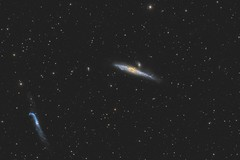 NGC 4631 Galaxy (Daniel McCauley) Tags: galaxy galaxies whale hockeystick ngc4631 ngc4656ngc4657 astrophotography astronomy astrophotos