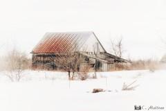 180328-53 Vieille grange (clamato39) Tags: grange barn rural neige snow hiver winter portneuf provincedequébec québec canada old