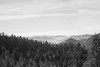 Sequoia National Park (SamKigyosphotography) Tags: yosemite halfdome black white bw blackandwhite national parks sequoia park sequoianationalpark yosemitenationalpark kingscanyonnationalpark nationalpark leica nature vista landscape beautiful environment