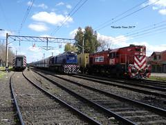 6631-A901_Ezeiza-1 (Ricardo_Tieso) Tags: general motors gr12 6631 ezeiza tren ferrocarril gt22 a90 trenes argentinos