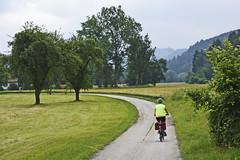 On the Road Again (Runemaker) Tags: bicycling patricia donau danube radweg donauradweg cycling radfahren austria oberösterreich upperaustria österreich road strase strasse