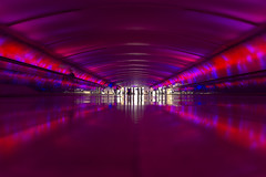 Detroit Metro Airport Walkway (johngoucher) Tags: approved detroit detroitmetroairport airport michigan architecturalphotography architecture building structure walkway wideanglelens rokinon rokinon12mm wideangle travel sonyimages sonyalpha blur ceiling colors traveling psychedelic 12mm