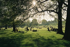 The Regent's Park - London - Canon AE-1 - Lens: 1.8 - 50mm (JJROD8) Tags: 35mm film kodak colorplus