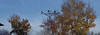 img308.jpg (happycooler) Tags: oldcamera осень old 135c21102015 пленка пейзаж город абакан film kodak