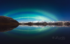 Aurora borealis, northern lights in Iceland (Daniel Viñe fotografia) Tags: northern lights aurora borealis iceland north space green arctic nordic finland winter sky reflection nature norway sweden landscape beauty scandinavia natural pole sea mountains ice lagoon cold