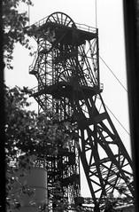 Ewald (hilgers1944) Tags: ruhrgebiet ruhrrevier ruhrarea ruhrpott kohlenpott schachtanlage steinkohlenzeche steinkohlenbergwerk steinkohlenbergbau zeche pütt fördergerüst förderturm schacht mine mijn mina mines mining coal coalmine coalmining colliery collieries charbon charbonnage chevalement shaft pit pithead headgear headframe mineheads shaftmine shaftmining mineshaft mineshaftheadgear chevalementminedecharbon chevalementpuitsdemine chevalementdemine miningheritage industrialheritage miningengineering industrialhistory industrialarchitecture architecture bw blackandwhite blackwhite old history fosse kopalnia dul szyb pozo puit industry industrie industria postindustrial endofindustry industrialdecay abandoned urbex bfv1 minesdecharbon puitsdemines ewald ewald34 zecheewald bergwerkewald bergwerkewald34 gelsenkirchen resse