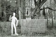 Anglų lietuvių žodynas. Žodis asylum reiškia n 1) prieglauda, prieglobstis; 2) psichiatrinė ligoninė; lunatic asylum pamišėlių namai lietuviškai.
