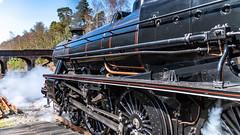45212 Winchfield 05 April 2016 (17) (BaggieWeave) Tags: winchfield hampshire southwestmainline lswr black5 blackfive 45212 460 cathedralsexpress steam steamengine steamlocomotive steamtrain