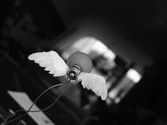 Fluglicht ... (Klaus Wessel) Tags: olympus omd em10 1240mm mft blackwhite bw monochrome hannover glühbirne licht light flügel fluglicht flightlight