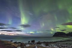 Aurora Borealis at Uttakleiv (Stefan Giese) Tags: nikon d750 walimex walimex14mmf28 polarlicht nordlicht auroraborealis northernlights uttakleiv norwegen norway lofoten