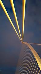 Abstract 1 (DepictingPhotos) Tags: abstract archelements bridges docks dublin dublinbynite europe ireland