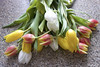 Tulips (Flower of the Woods) Tags: tulips flowers tulip flower bouquet spring nature colourful green yellow white orange bunch