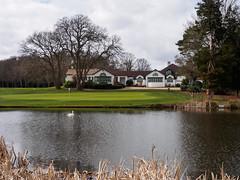 Woking Golf Club-E3230033 (tony.rummery) Tags: clubhouse em10 flag golf golfcourse green hole lake mft microfourthirds omd olympus pin pond waterbird woking england unitedkingdom gb