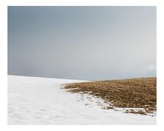 hébertville (Mériol Lehmann) Tags: rural minimalism landscape winter topographies snow hébertville québec canada ca