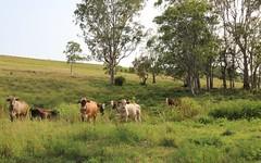 170A Lagoon Grass Road, Lismore NSW