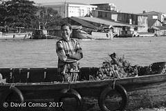 Mekong Delta - Cần Thơ - Cai Rang Floating Market (CATDvd) Tags: catdvd davidcomas httpwwwdavidcomasnet httpwwwflickrcomphotoscatdvd september2017 cộnghòaxãhộichủnghĩaviệtnam repúblicasocialistadevietnam repúblicasocialistadelvietnam socialistrepublicofvietnam việtnam vietnam nikond70s social market mercado mercat rio deltadelmekong đồngbằngsôngcửulong mekongdelta cantho cầnthơ cairangfloatingmarket chợnổicáirăng mercatflotantdecairang mercadoflotantedecairang riu river barca boat portrait retrat retrato
