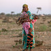 Portrait of a somali mother with her children collecting wood, Woqooyi Galbeed province, Baligubadle, Somaliland