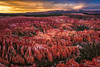 Bryce Canyon in the Glow of Sunset (jthight) Tags: autumn october hoodoos sunset canyon nationalpark mountains landform brycecanyoncity ut fall rocks nikond810 afzoom2470mmf28g utah clouds fallcolors brycepoint trees places usa brycecanyon sky brycecanyonnationalpark unitedstates amphitheater lightroom landscape