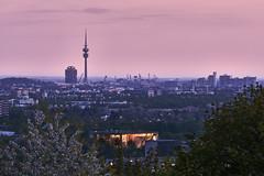 Munich Dusk (redfurwolf) Tags: munich dusk tower olympia olympicstadium city view sky clouds redfurwolf sonyalpha a7rm3 tree cherry sony germany landscape outdoor