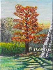 Lookin out my back door (FaithOnCanvas) Tags: original originalart acrylipainting acrylic autumn autumnpainting landscape landscapepainting sharonmorthier
