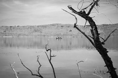 Looking for (the) spring (auqanaj) Tags: d700 marialaach blackandwhite monochrome schwarzweis nature natur lake see vulkansee volcano calderasee kratersee vulkaneifel eifel caldera boot boat holz äste branches wood forest sky