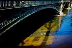 Graphic Seine (Calinore) Tags: france paris city ville river seine dock quais crue inondation shadow ombre tree arbre bridge pont