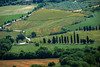 Countryside (Tati@) Tags: campagna toscana