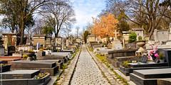 Père Lachaise (L'Abominable Homme de Rires) Tags: pèrelachaise cimetière tombe tombstone tombeau funeraire parisxxème canon5d 5dmkiii sigma 24105mmf4 dxo photolab lightroom
