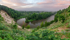Fertile Banks (Aaron Springer) Tags: michigan northernmichigan manisteeriver woodland forest trees clouds sunrise fog mist river water reflection outdoor nature panoramiclandscape