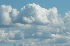 clouds (cfdtfep) Tags: cluods fluffy puffy cotton soft sky blue white pure purity weather calm peaceful backround environemnt