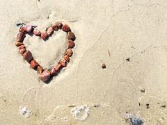❤️ (Die Asta) Tags: sten strand hjerte