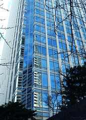 Tall in Tokyo (DameBoudicca) Tags: tokyo tokio 東京 japan nippon nihon 日本 japón japon giappone reflection spegling reflektion reflet reflejo 反映 skyscraper skyskrapa wolkenkratzer hochhaus höghus rascacielos torre gratteciel grattacielo 摩天楼 まてんろう 超高層建築 ちょうこうそうけんちく スカイスクレーパー