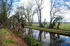 Reflections of the Leeds-Liverpool canal (zawtowers) Tags: ruffordoldhall rufford lancashire national trust property hesketh family residence gradei listed building built 1530 historic house leeds liverpool canal waterway reflection trees water