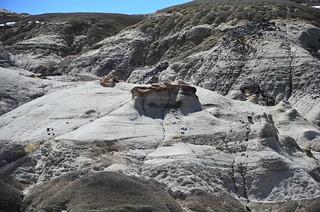 Bisti/De-Na-Zin Wilderness 90