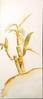 "IMG_1949_6 (BECCA PONS [bp] + CREATIVE) Tags: art creative oyster louisiana louisianaart louisianaartist grey blue aqua green paint white acrylic southernart neworleansart neworleansartist crane southernbirds southern ocean life artist designer painter drawing beccapons rebeccapons beccaponscreative artcollections ""wings aura"" wings aura watercolor canvas ""louisiana artist"" ""gallery"" ""art exhibition"" exhibition gallery"" wingsandaura acry painting free louisamystery portraits fleurdelis red deepestlove abstract"