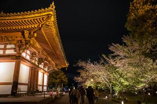 Day4 京都 - 東寺 夜景