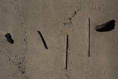 Fishermans Bend April 2018 (i_shudder) Tags: melbourne yarra driftwood ground foundart australia forms shapes sand beach wood creativeartphotography