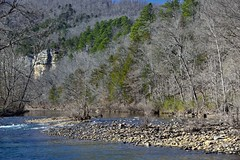 Waters of the Buffalo River and a Hillside of Trees (Buffalo National Park)