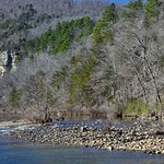 Waters of the Buffalo River and a Hillside of Trees (Buffalo National Park) thumbnail