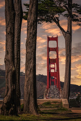 Golden peak, San Francisco (reinaroundtheglobe) Tags: sanfrancisco california usa goldengatebridge bridge traffic landscape trees framing fullframe daytime moody colorfulsky