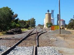 Woomelang station and yard - Early stages of the gauge conversion works along the Mildura-Dunolly line. (Amateur-Hour Photography) Tags: railroad railways railway train trains locomotive locomotives diesel diesels australiantrains freighttrain canon canonpowershot