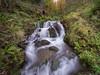 DSC_2463 (ampg69) Tags: fervenzas cascadas rios carral nikon tamron 1530f28 galicia coruña muiño